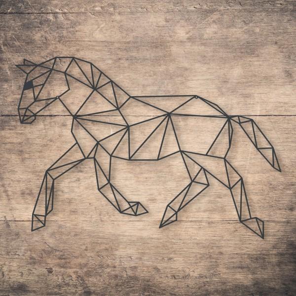 Geometric Horse Run