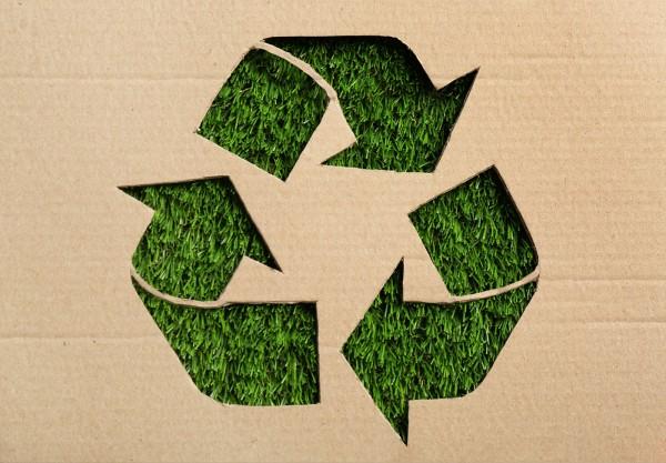Wattnsteel-Blog-wir-lieben-unsere-Umwelt